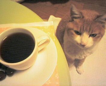 Chacoffee